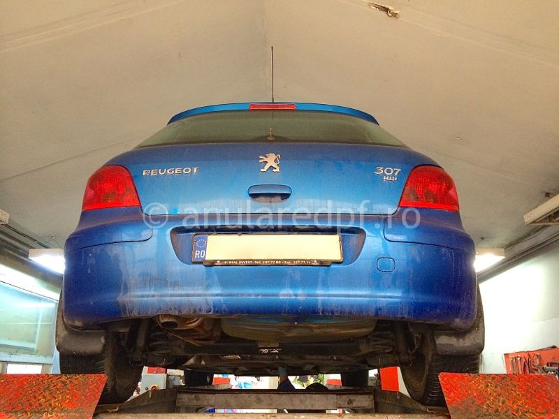 anulare_fap_peugeot307_3