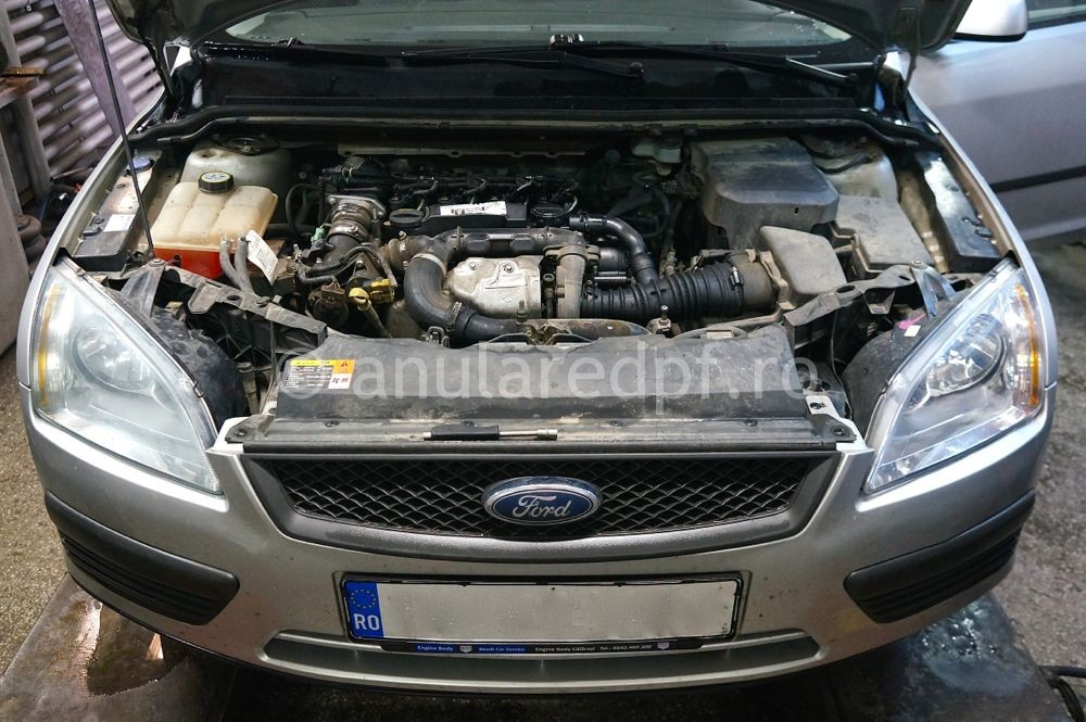 Anulare DPF Ford Focus - 06