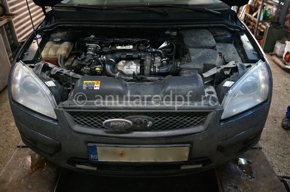 Anulare DPF Ford Focus - 52