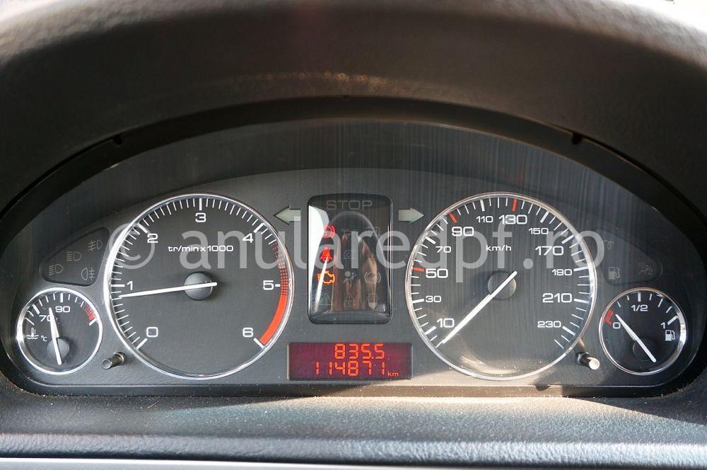 Anulare fap Peugeot - 07