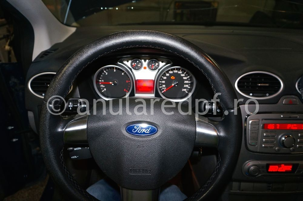 Anulare DPF Ford Focus - 100