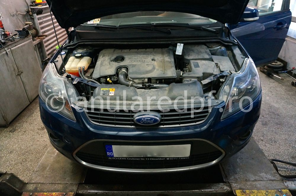 Anulare DPF Ford Focus - 108