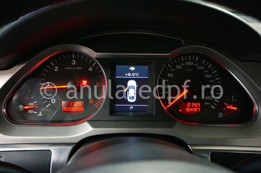 Anulare dpf Audi A6 - 14