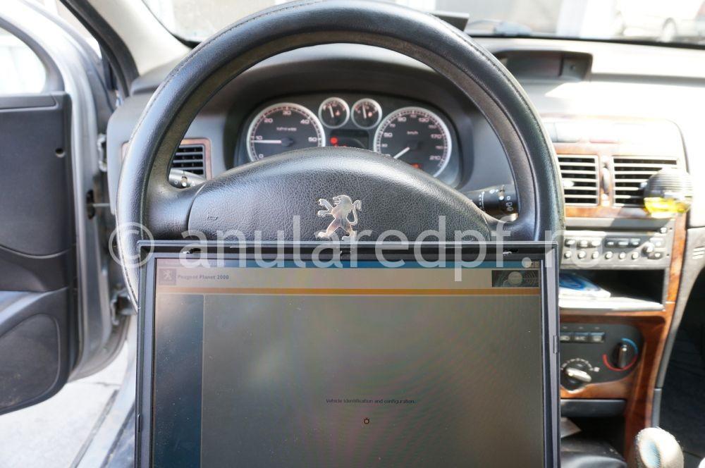 Anulare Fap Peugeot 307 - 02