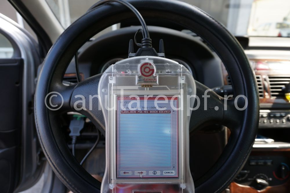 Anulare Fap Peugeot 307 - 07