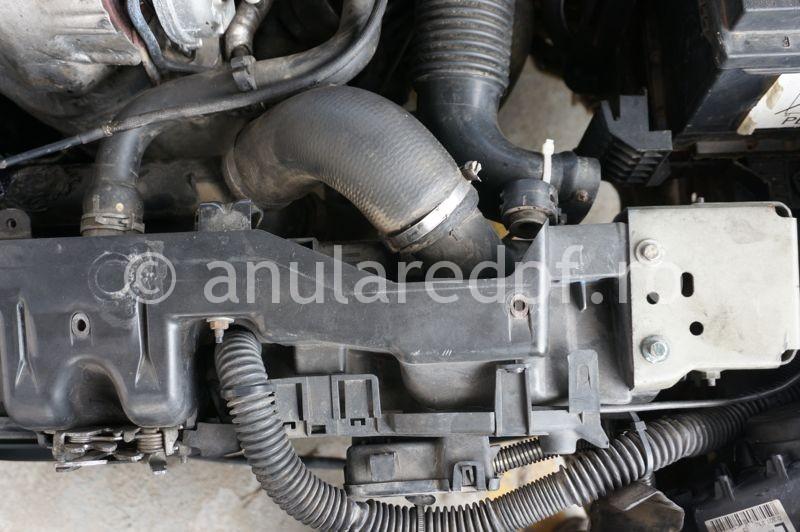 Anulare fap Peugeot - 91