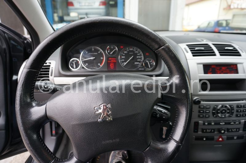 Anulare fap Peugeot 407 - 09