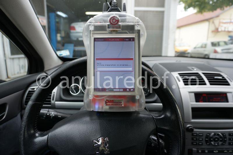 Anulare fap Peugeot 407 - 20