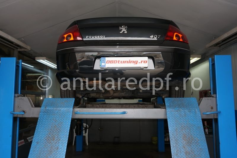 Anulare fap Peugeot 407 - 22