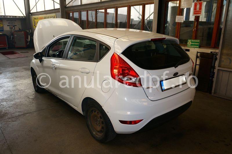 Anulare dpf Fiesta - 2