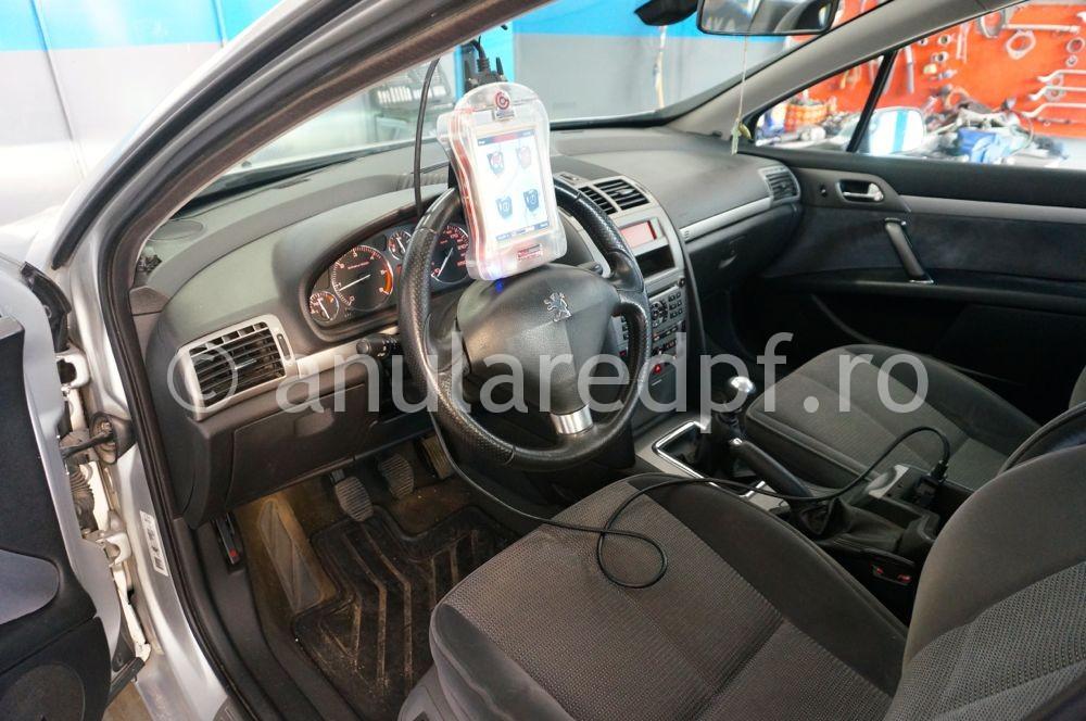 Anulare fap Peugeot 407  - 35