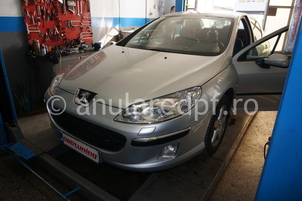 Anulare fap Peugeot 407  - 37