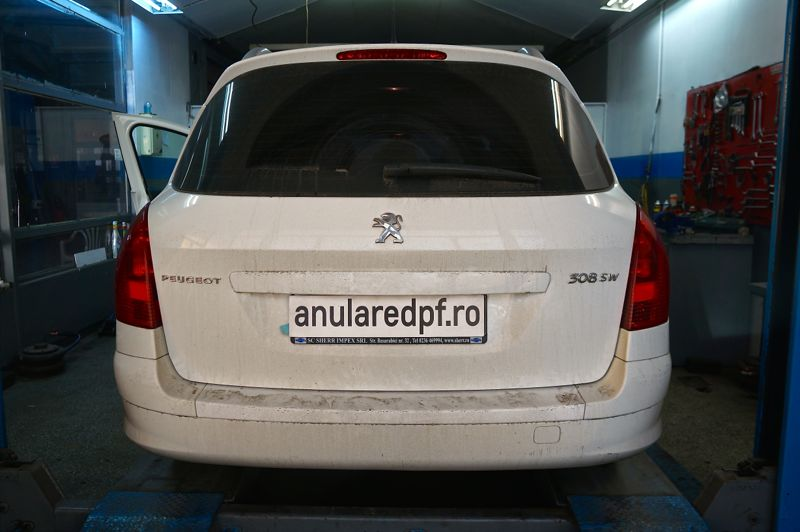Anulare FAP Peugeot 308 - 14