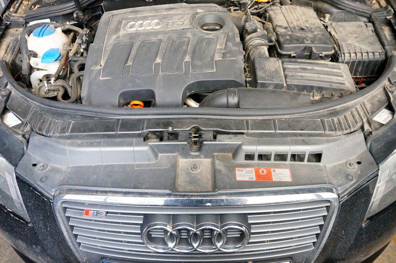 Anulare dpf si egr Audi A3 1.6TDI - 02