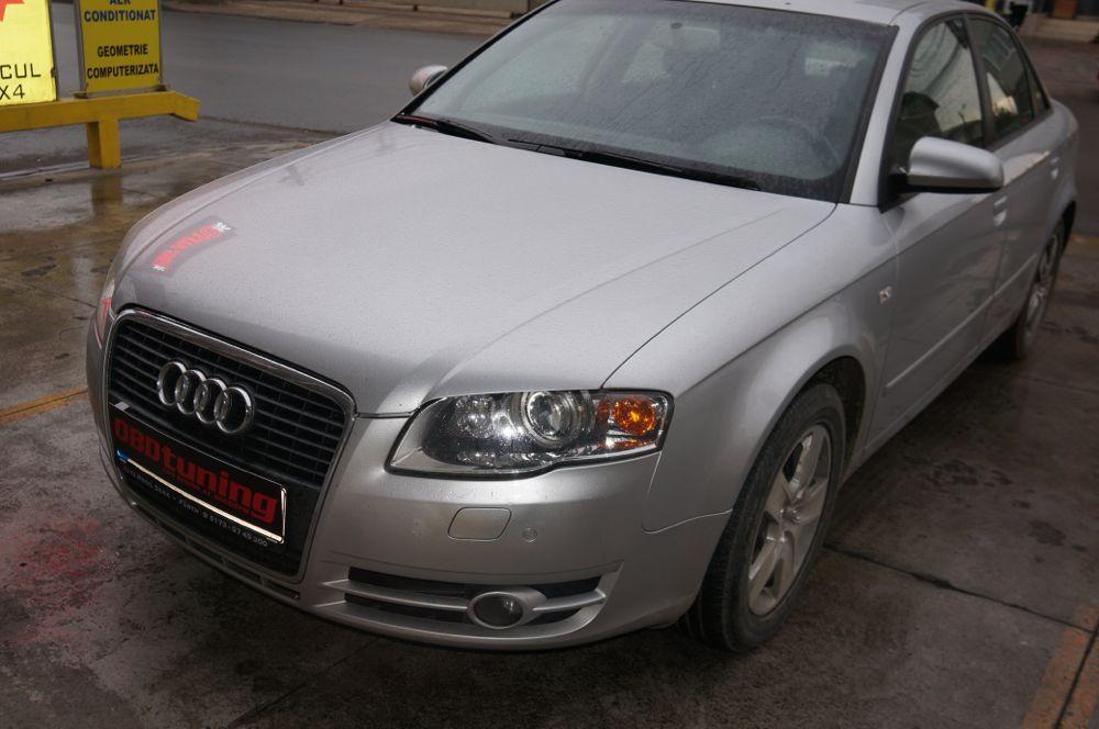 Anulare dpf Audi - 29