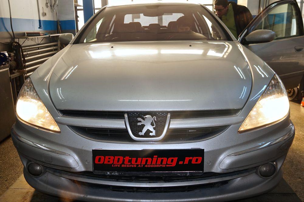 Anulare fap Peugeot 607 - 19