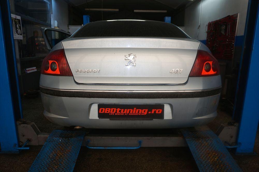 Anulare fap Peugeot 407  - 56