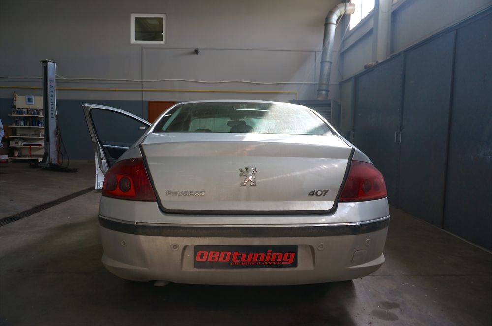 Anulare fap Peugeot 407 - 85
